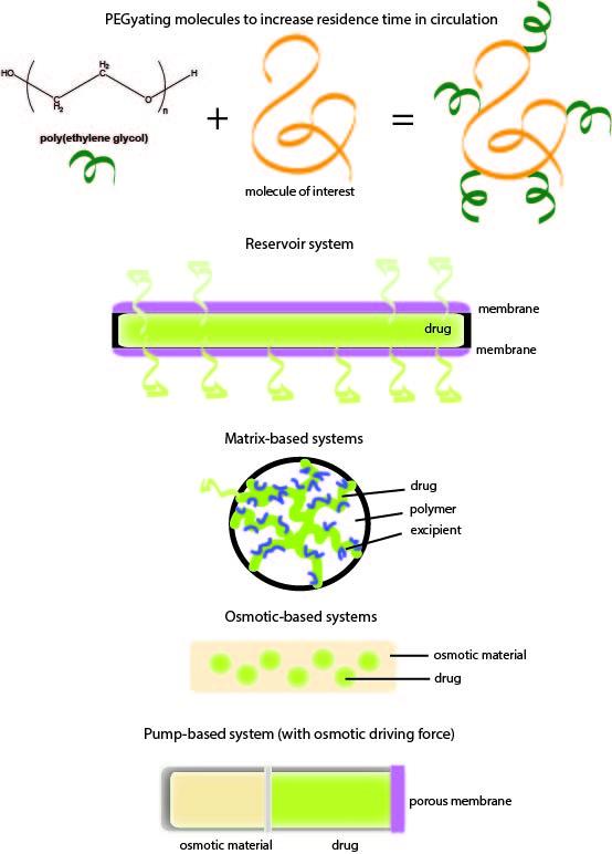 fig1-retina